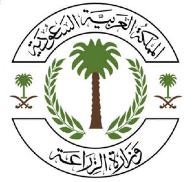 """""""الزراعة """" تسمح باستيراد الفصيلة الخيلية من البحرين"""