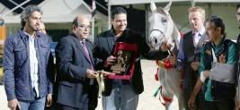 مربط المملكة يهيمن على بطولة رباب الدولية