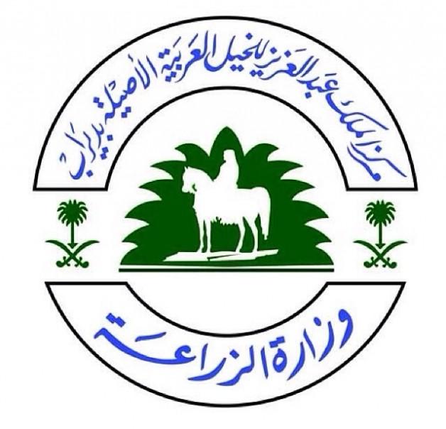 رفع الحظر عن تصدير الخيل العربية من المملكة العربية السعودية