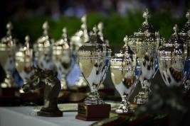 مقتطفات من اليوم الثاني لبطولة العالم لجمال الخيل العربية الأصيلة 2013