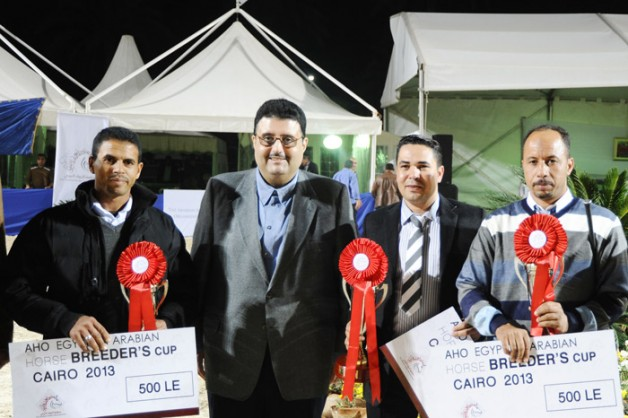 «الجواد العربي» تختتم بطولة المربين الثالثة بمصر بنجاح وتكرم العارضين العرب وأفضل مزرعة منتجة