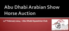 قائمة مزاد ابوظبي لجمال الخيول العربية ٢٠١٤
