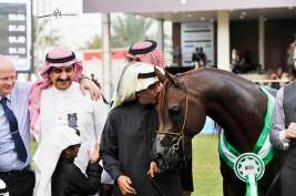 مهرجان الأمير سلطان بن عبدالعزيز يختتم.. اليوم