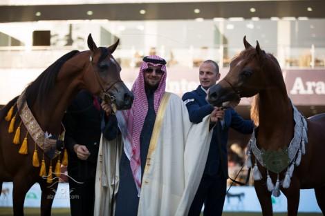 مقتطفات من اليوم الختامي لبطولة الأمير سلطان العالمية لجمال الخيل العربية الأصيلة