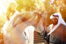 فن الوقوع في شغف الخيول العربية الأصيلة !