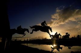 Saudi Arabia lifts Ban on Jordanian Horses «Sports Participation»