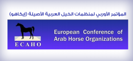 ECAHO: Presenting of own horses is forbidden for organizers at the shows which they organize