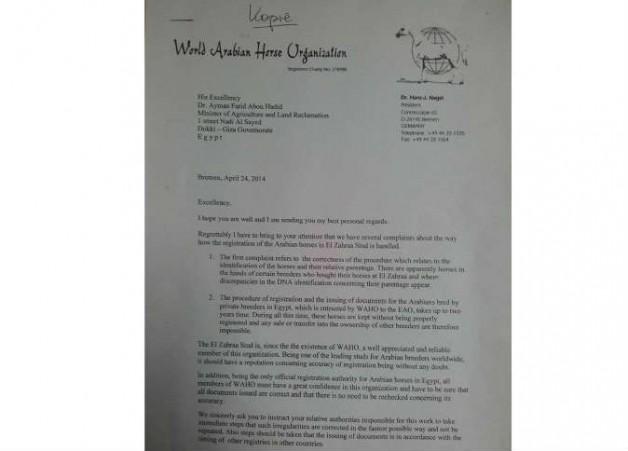 """«الزراعة المصرية» تتلقى تهديد منظمة """"الواهو"""" بتعليق عضوية مصر وتراجع إجراءات تسجيل الخيول العربية"""