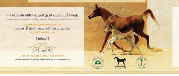 برنامج بطولة منتجي الخيل العربية الثالثة ٢٠١٤م