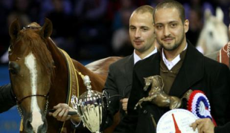 «ابها قطر» يهدي اسطبلات المحمدية وصافة «العالم» في «الجمال»