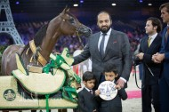 PARIS 2014 – The World Arabian Horses Championships Final Results with Photos