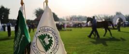 تمديد فترة التسجيل في بطولة الرياض لجمال الخيل العربية 2019 الى نهاية يوم الجمعة