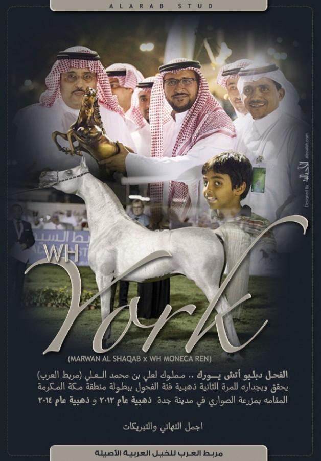 مربط العرب