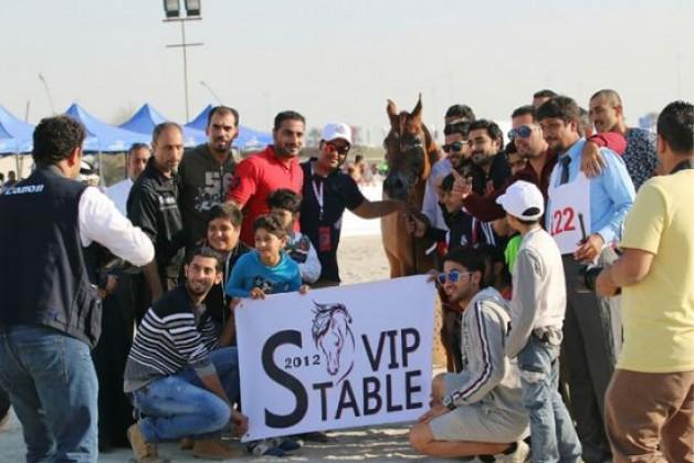 ختام ناجح لبطولة البحرين المحلية لجمال الخيل العربي