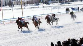 الإمارات تتحدى الجليد وتنظم سباقاً للخيل العربية على بحيرة متجمدة بسويسرا