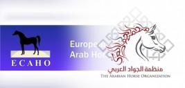 منظمة (الإيكاهو) تقر اتفاقية مشتركة مع منظمة (الجواد العربي) و تجدد لـ(لاسينا) رئيساً لها