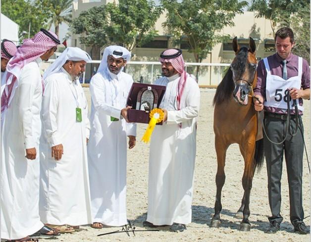 منافسة شرسة في اليوم الأول بـ«قطر الدولية الـ ٢٤» و «المعود» يسجل أعلى الدرجات – النتائج