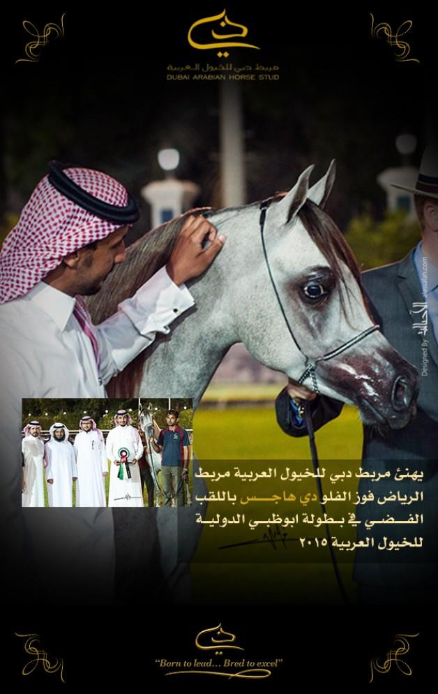 تهنئة لمربط الرياض للخيل العربية الأصيلة