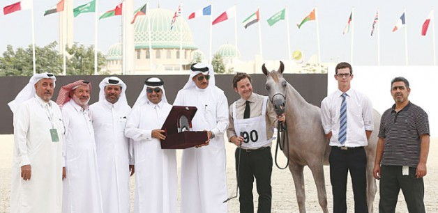 Qatar dominates at the International Arabian Horse Show