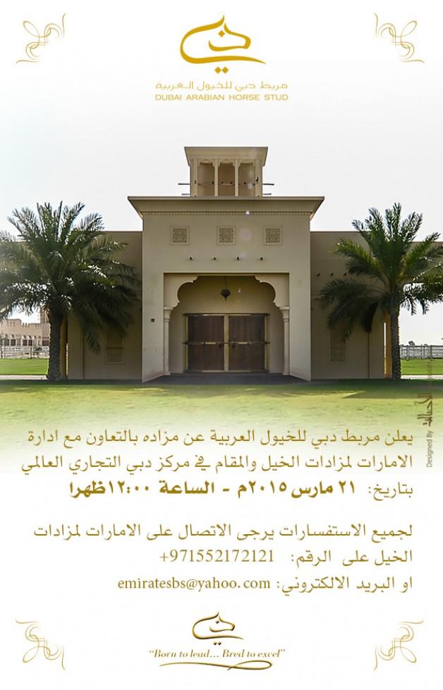 مزاد دبي للخيول العربية ٢٠١٥