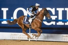 «عذبة» تمثل المملكة في سباق «الكحيلة كلاسيك» بكأس دبي العالمي