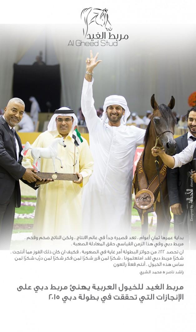 مربط الغيد مربط دبي على إنجازات بطولة دبي ٢٠١٥