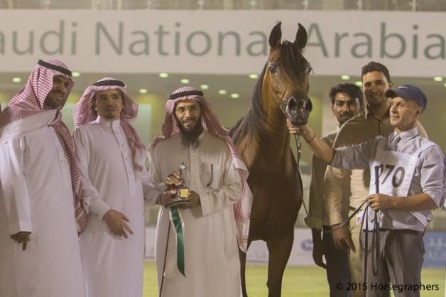 صور تكريم الفئات في البطولة الوطنية السادسة لجمال الخيل العربية الأصيلة