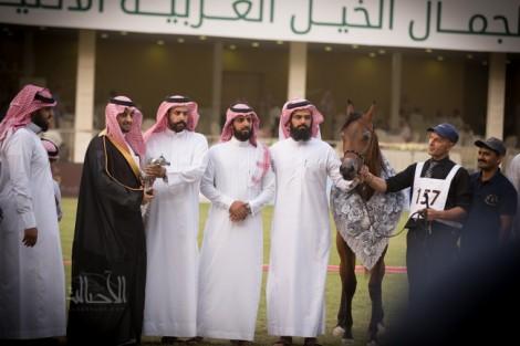 مقتطفات من البطولة الوطنية السادسة لجمال الخيل العربية الأصيلة