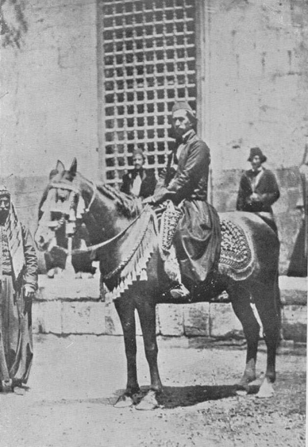 شخصيات في تاريخ الخيل العربية: على باشا الشريف