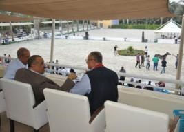 «الجيزة» تحتضن البطولة الدولية الأولى لجمال الخيول العربية المصرية