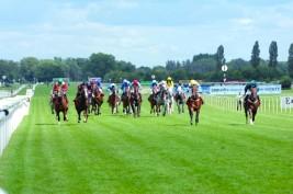 سباق دبي الدولي للخيول العربية ينطلـق في نيوبري 26 الجاري