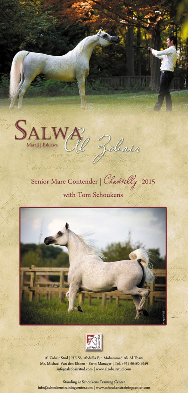 Salwa Al Zobair – Chantilly contender