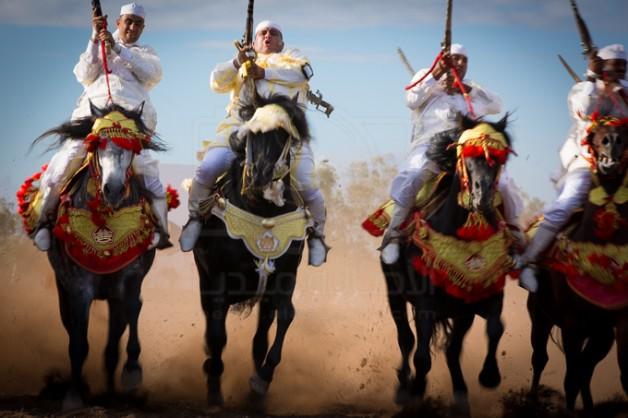 الخيول البربرية..3000 سنة من الحكايات خلال الدورة الثامنة لمعرض الفرس