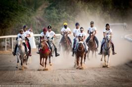 بالصور: (الدوسري) و (الصغير) و  (الضاعن) أبطال أشواط ماراثون الأصيل للخيل العربية الأصيلة بنسخته الثالثة