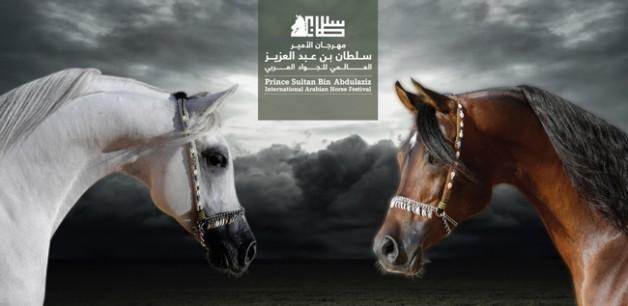 بدأ التسجيل بمهرجان الأمير سلطان بن عبدالعزيز العالمي للجواد العربي الثالث ٢٠١٦