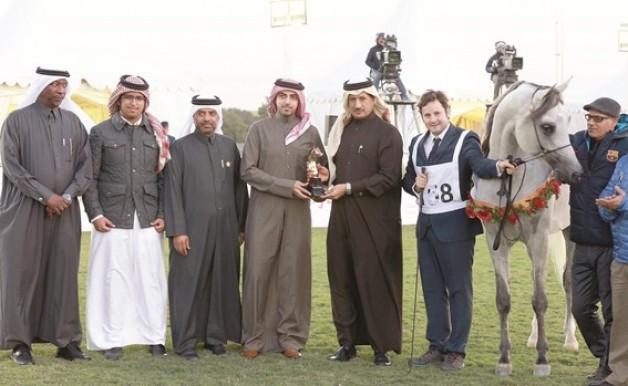 ختام مثير لبطولة جمال الخيل العربية الأصيلة المحلية بقطر