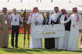 نتائج فئات اليوم الأول من بطولة مركز الملك عبدالعزيز الدولية الثانية لجمال الخيل العربية الأصيلة