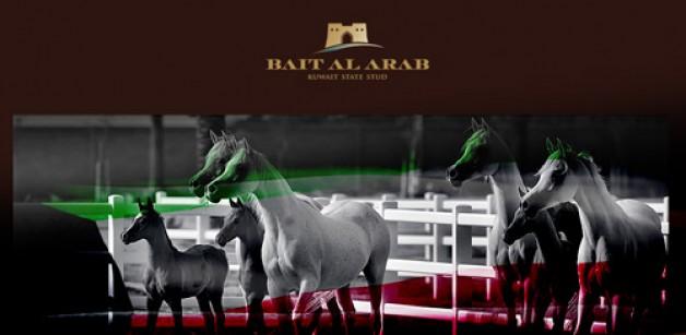 انطلاق مهرجان الكويت الدولي ٢٠١٦ لجمال الخيل العربية اليوم