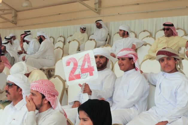 مزاد عجمان للخيول العربية ينجح بتحقيق مبيعات فاقت الـ ١٫٦ مليون درهم اماراتي