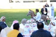 مبيعات مزاد ابوظبي للخيول العربية ٢٠١٦ تتجاوز الـ ٢٫٣ مليون درهم و ٤٠٠ الف الأغلى سعراً – صور