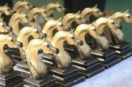 صور مقتطفات اليوم الأول من بطولة الفجيرة الأولى لجمال الخيول العربية