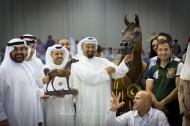 صور مقتطفات اليوم الختامي لبطولة دبي الدولية للجواد العربي ٢٠١٦
