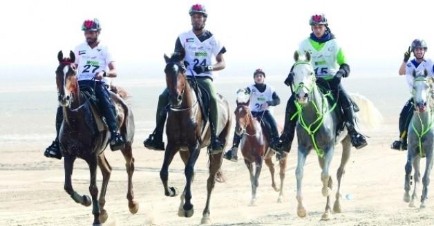 سحب تنظيم بطولة العالم  لسباقات القدرة من الامارات