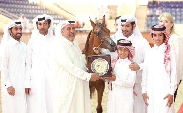 مشاركة قياسية في بطولة الأهالي لجمال الخيل في قطر