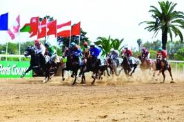 مهرجان منصور بن زايد للخيول العربية يخطف الأضواء في المغرب