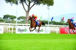 سباق دبي الدولي للخيول العربية ينال اعتراف «إيفار»