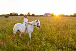 Healing horses help children cope with loss