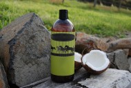 Coconut oil how could it help your horse?