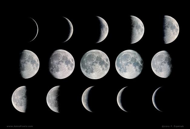 دراسة: لا أدلة على تأثير منازل القمر على جنس المهر