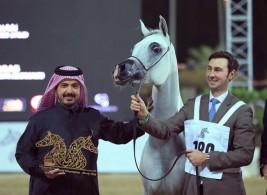 «دبي» و «الزبير» يحصدان ذهب (الشارقة) للإنتاج المحلي في نسخته الـ 13 – النتائج النهائية
